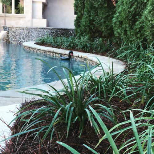 Pool Install with Landscaping